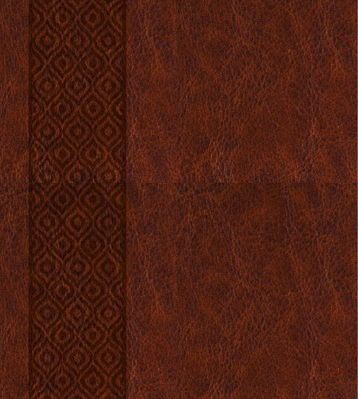 KJV Expressions Bible-Deluxe Brown Hardcover