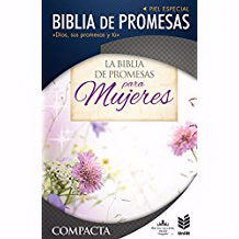 Span-RV 1960 Promise Bible/Compact-Floral Imitation Leather Indexed