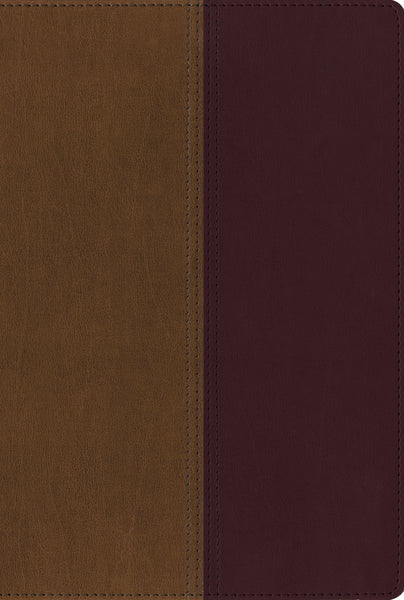 NIV, KJV, Side-by-Side Bible, Leathersoft, Tan/Burgundy