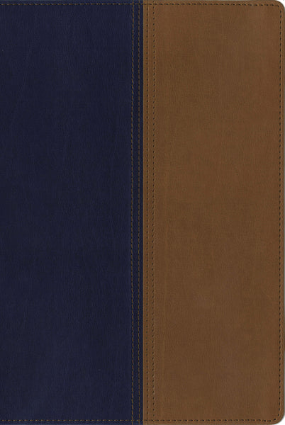 NIV, KJV, Parallel Bible, Large Print, Leathersoft, Navy/Tan