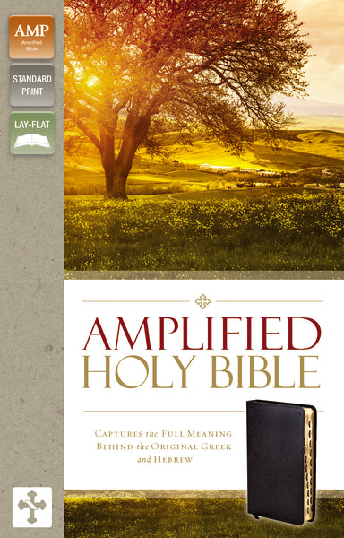 Amplified Holy Bible, Bonded Leather, Black, Thumb Indexed