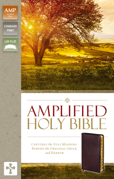 Amplified Holy Bible, Bonded Leather, Burgundy, Indexed