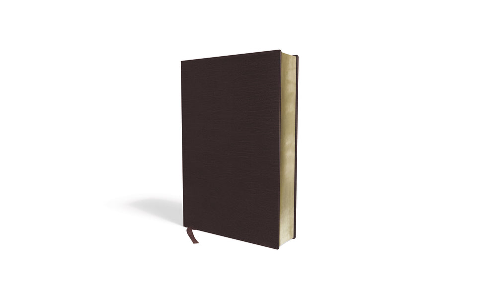 Amplified Holy Bible, Large Print, Bonded Leather, Burgundy