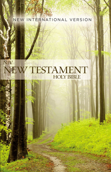NIV, Outreach New Testament, Paperback