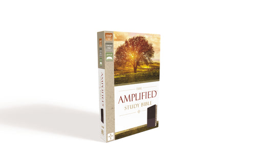 The Amplified Study Bible, Leathersoft, Purple, Thumb Indexed