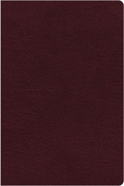 NIV, Thinline Reference Bible, Large Print, Bonded Leather, Burgundy, Red Letter Edition, Thumb Indexed, Comfort Print