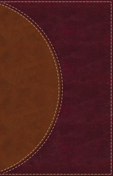 Amplified Reading Bible, Leathersoft, Brown