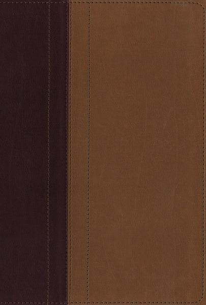 NIV, Quest Study Bible, Leathersoft, Burgundy/Tan