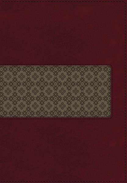 KJV Study Bible, Leathersoft, Maroon/Brown, Thumb Indexed, Red Letter Edition