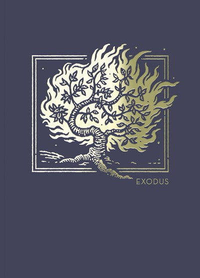NET Abide Bible Journal - Exodus, Paperback, Comfort Print