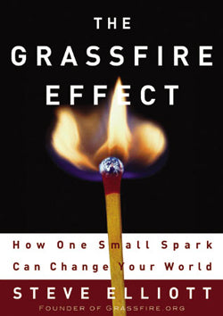 Grassfire Effect, The