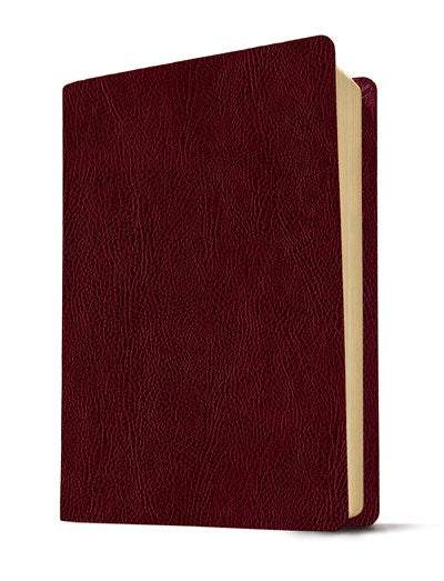 KJV Life Application Study Bible, Second Edition (Red Letter, Bonded Leather, Burgundy/maroon)
