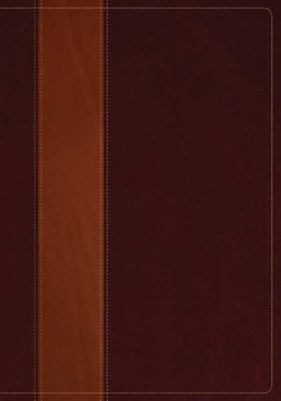 NIV Life Application Study Bible, Second Edition, TuTone (Red Letter, LeatherLike, Brown/Tan)