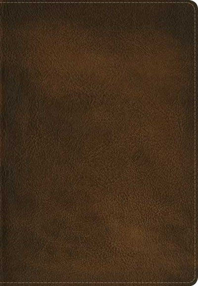 Slimline Reference Bible NLT (LeatherLike, Brown)