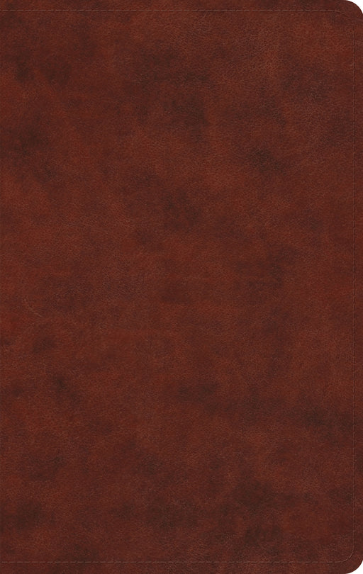 ESV Large Print Value Thinline Bible (TruTone, Chestnut)