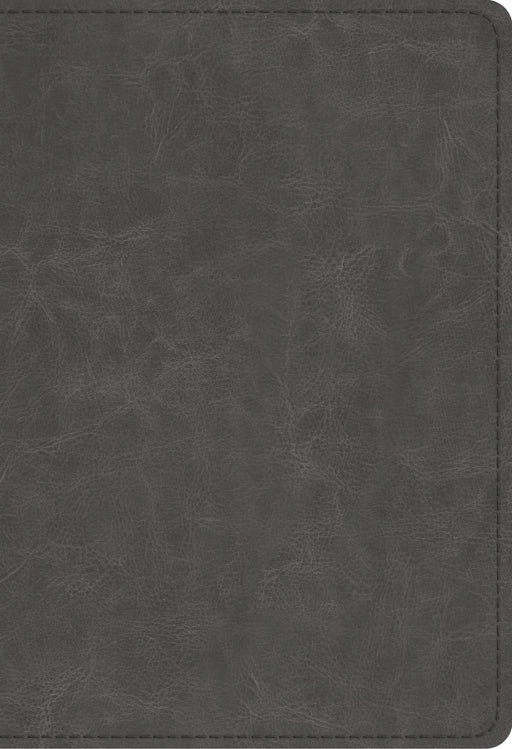 ESV Student Study Bible (TruTone, Gray)