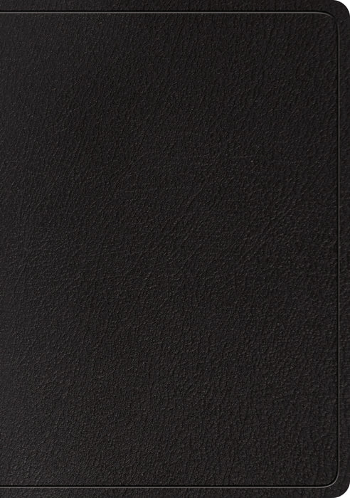 ESV Large Print Wide Margin Bible (Black)