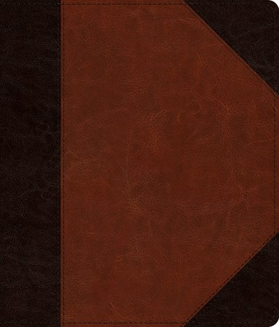ESV Journaling Bible (TruTone, Brown/Cordovan, Portfolio Design)