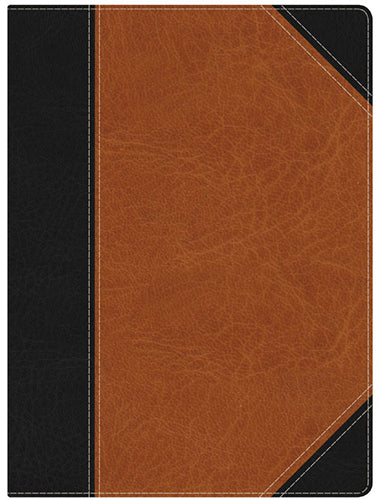 HCSB Study Bible, Black/Brown LeatherTouch