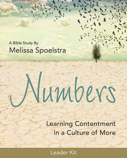 Numbers - Women's Bible Study Leader Kit