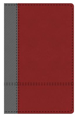 The KJV Study Bible Student Edition--Indexed (Gray/Maroon)