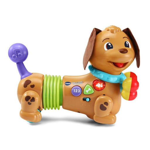 Vtech Rattle & Waggle Learning Pup