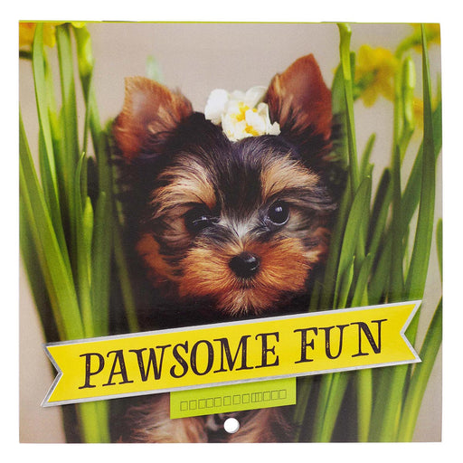 Pawsome Fun 2021 Small Wall Calendar