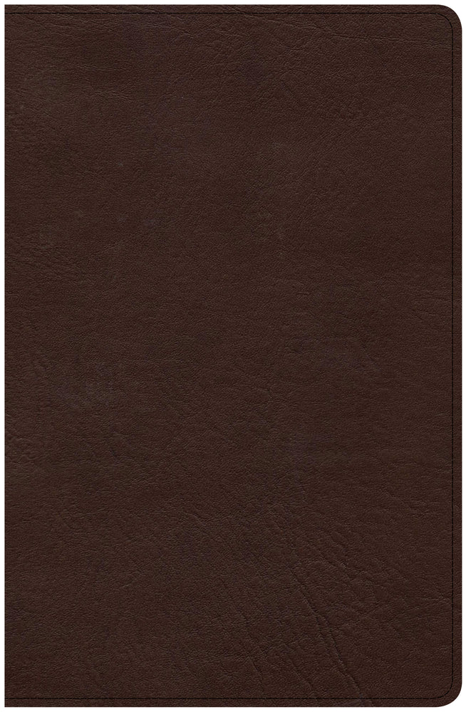CSB Ultrathin Bible, Brown LeatherTouch, Indexed