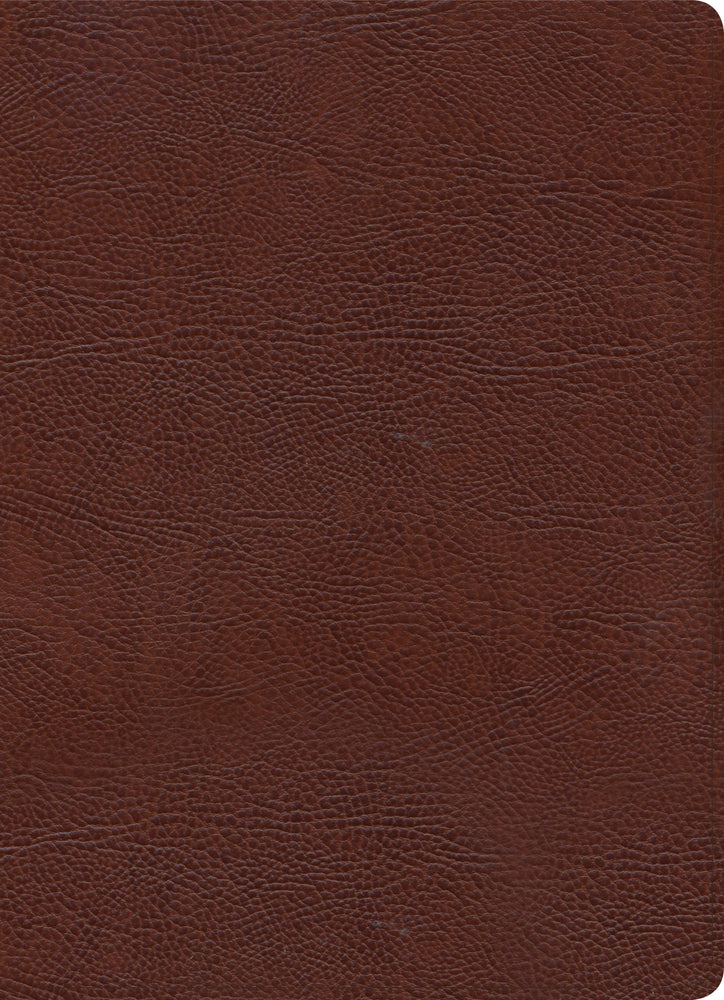 KJV Study Bible, Full-Color, Brown Bonded Leather, Indexed