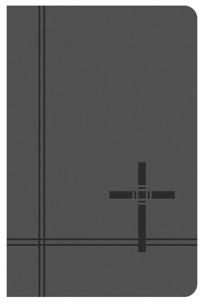 KJV Deluxe Gift & Award Bible (Gray)