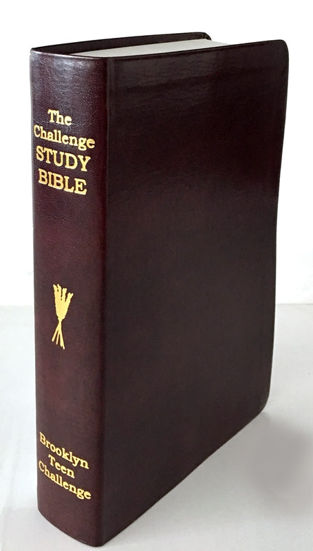 CEV Challenge Study Bible-Flexi Cover