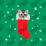 American Shorthair in a Christmas stocking Sweatshirt
