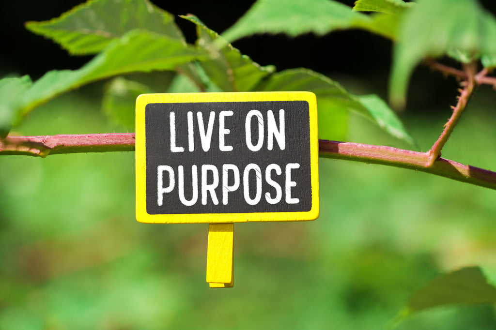 How A Sense Of Purpose Impacts Your Life