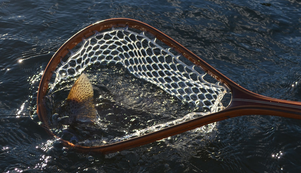 Fish in net. Tailwater Outdoors premium quality classic style fishing nets, handmade from high quality woods. Ideal for all fishing and outdoor enthusiasts.