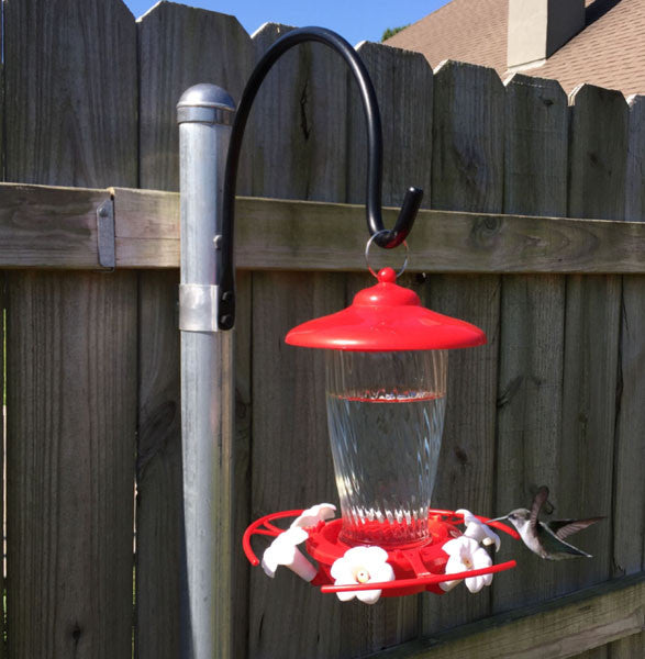 Hummingbird nectar... You've been doing it wrong!