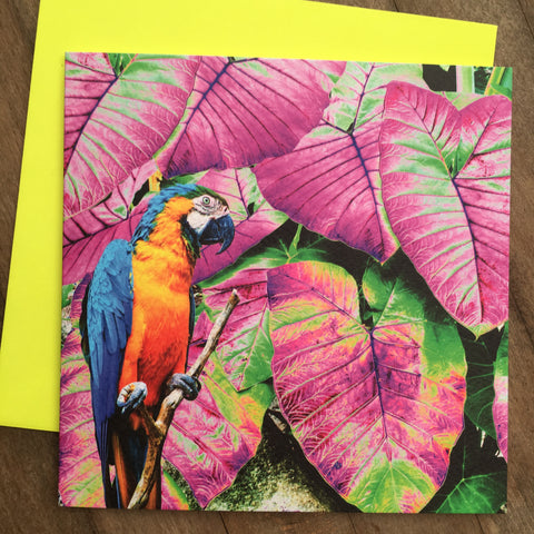 Card - Neon Tropics Bird (NT07GC)
