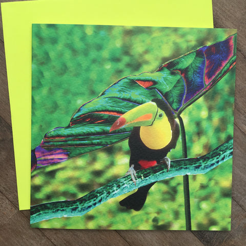 Card - Neon Tropics Toucan (NT12GC)