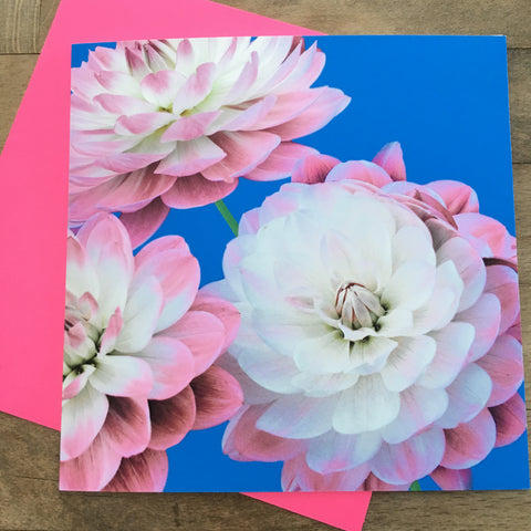 Card - Neon Photo Flowers (PF10GC)