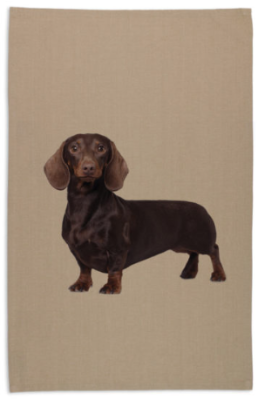 Tea Towel - Dachshund