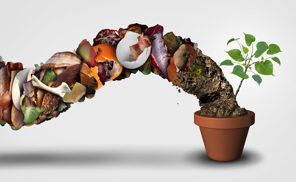 From Compostable to Compost: How it's Unmade