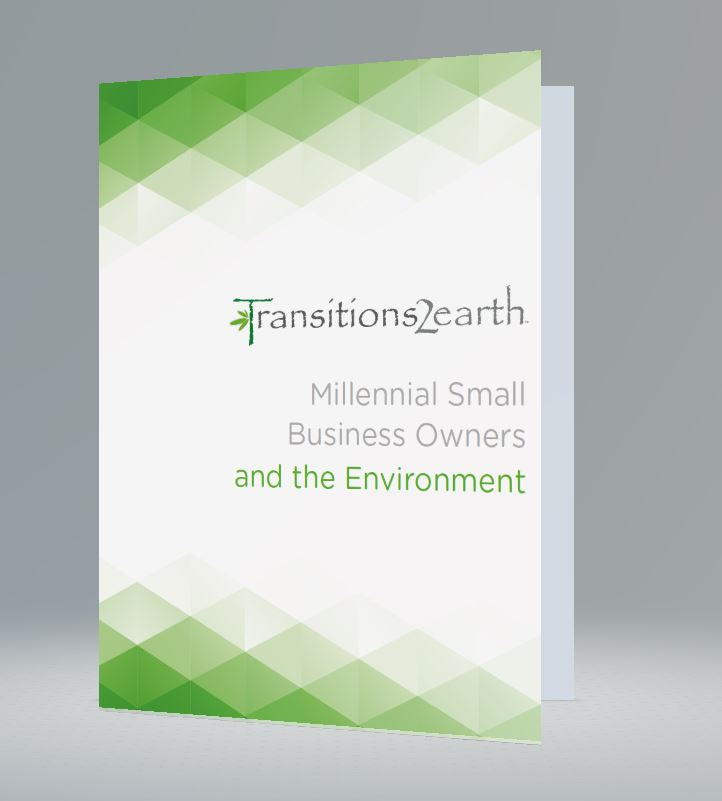 Millennial Small Business Owners and the Environment