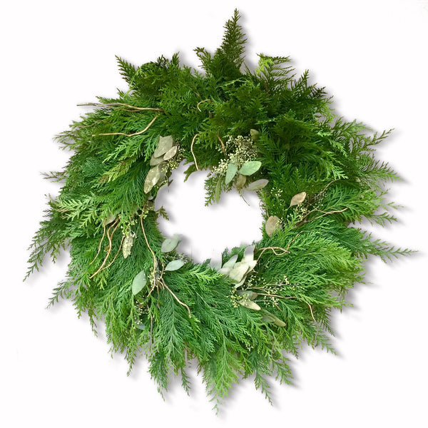 Alpine Meadows Hideaway Wreath | Club Botanic | Cedar Christmas Wreath | Green Cedar and Eucalyptus Wreath for Christmas | Fresh Christmas Wreath with cedar, bay leaf and curly willow | Memorial wreath