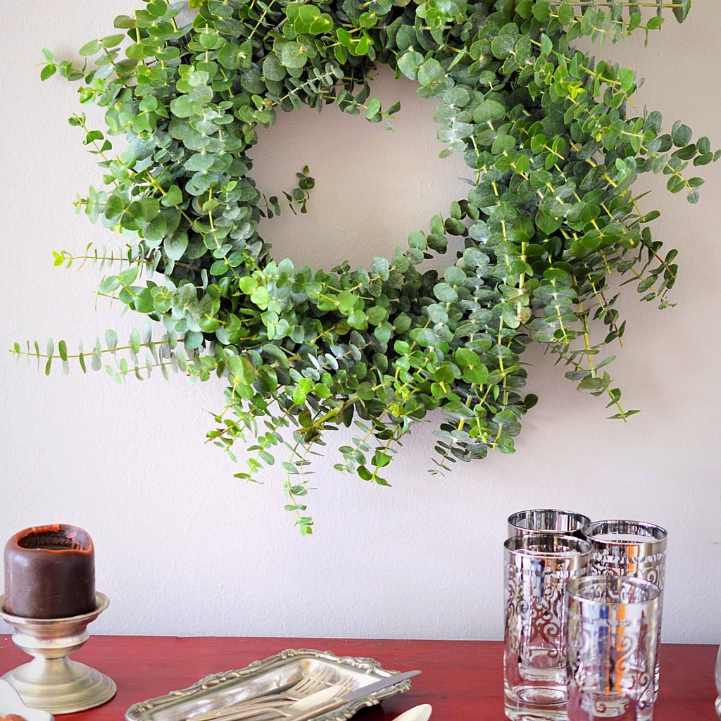 Baby Eucalyptus Wreath | Club Botanic | Green Baby Eucalyptus Fresh Wreath for Indoors | Outdoor Wreath Baby Eucalyptus Fresh | Fresh Spring Wreath Eucalyptus
