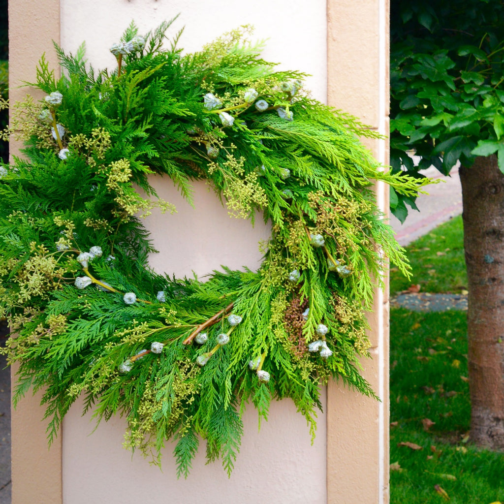 Mendocino Holiday Cedar Wreath | Club Botanic | Cedar Christmas Wreath | Green Cedar and Eucalyptus Wreath for Christmas | Fresh Christmas Wreath with cedar, blue bell pods and stripped eucalyptus seeds hanging on post outdoors