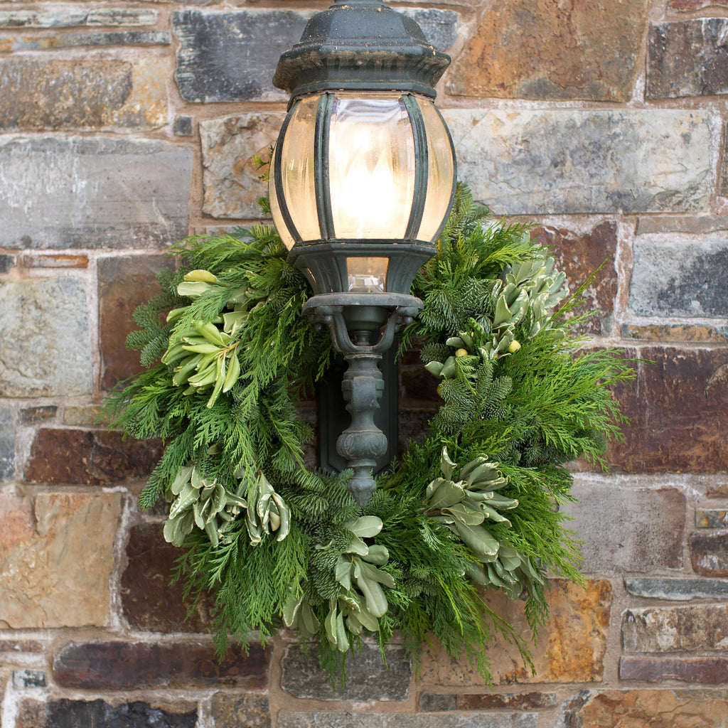 California Greens Holiday Wreath | Club Botanic | Holiday Cedar Wreath Fresh | Christmas Cedar Wreath Fresh | Cedar and Pine Wreath on hanging on outdoor lantern | Fresh Christmas Wreath displayed outdoors on Rock wall