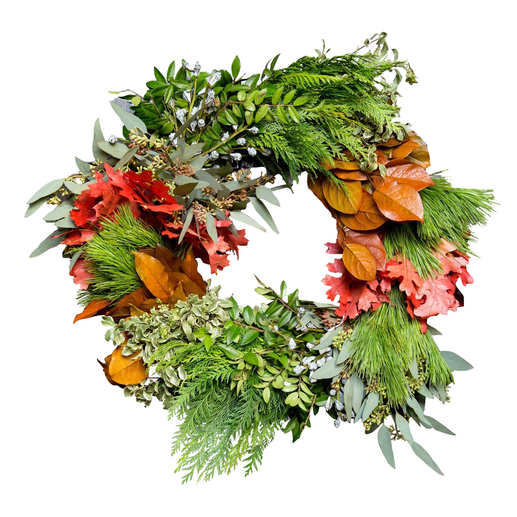 Celebrate Fall Wreath | Red Oak Autumn Wreath | Cedar and Boxwood Wreath for Fall | Mixed Fresh Wreath for Fall time | Autumn Door Wreath Fresh | Fall Door Wreath Fresh | Magnolia Door Wreath Fall