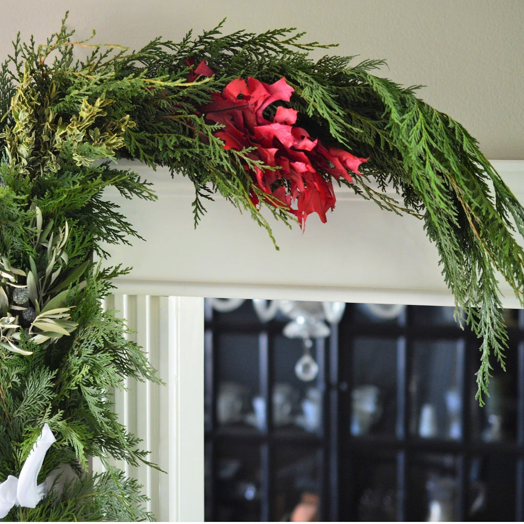 Celebrate Christmas Garland | Club Botanic | Holiday Garland for the Door | Garland for the Mantle | Fresh Greenery for Christmas | Indoor and Outdoor Garland for Fall | Wedding Garland | Fresh Wedding Garland