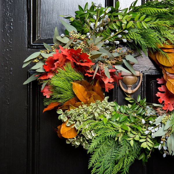 Celebrate Fall Wreath | Red Oak Autumn Wreath | Cedar and Boxwood Wreath for Fall | Mixed Fresh Wreath for Fall time