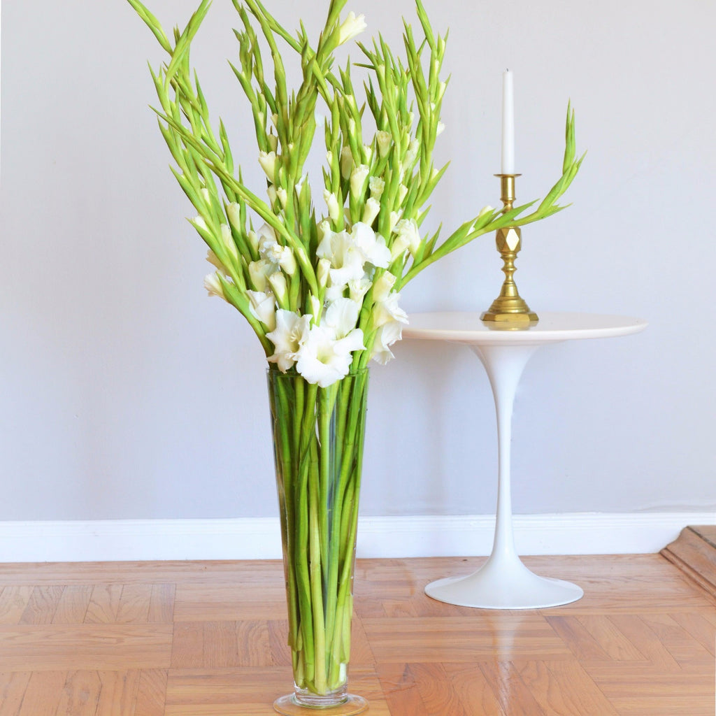 White Gladiolus | Sympathy Flowers | Funeral Flowers