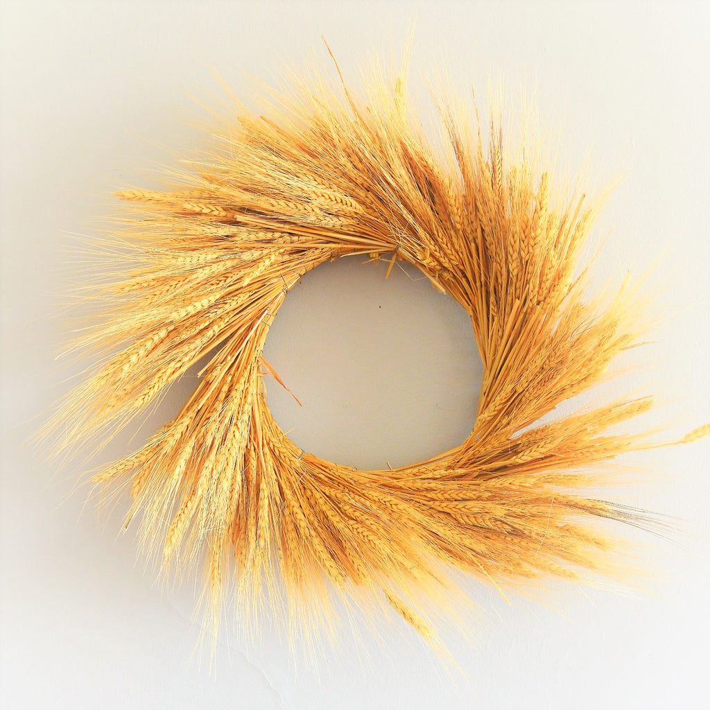 Harvest Wheat Wreath | Wheat Wreath for Fall | Dried Wheat Wreath | Preserved Wheat Wreath | Golden Wheat Wreath | Yellow Wheat Wreath